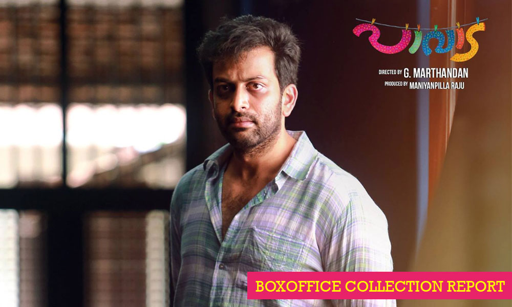 Paavada Boxoffice Collection Reports